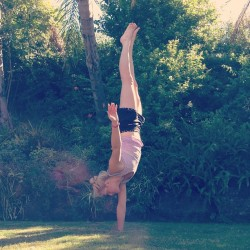 togetherwellmakeitthrough:  One handed handstands in my jungle of a backyard 🌴🌴