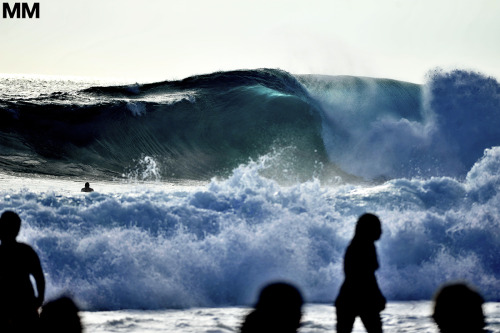 morganmaassen:  Somewhere in the Indian Ocean, lies this beast…