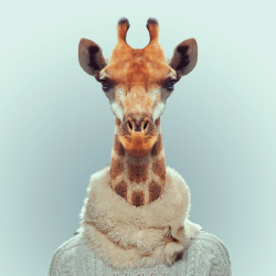 Spring style for me!  GIRAFFE by Yago Partal for ZOO PORTRAITS