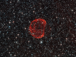 The remains of a star gone supernova by europeanspaceagency on Flickr.Via Flickr: These delicate wisps of gas make up an object known as SNR B0519-69.0, or SNR 0519 for short. The thin, blood-red shells are actually the remnants from when an unstable progenitor star exploded violently as a supernova around 600 years ago. There are several types of supernova, but for SNR 0519 the star that exploded is known to have been a white dwarf star — a Sun-like star in the final stages of its life. SNR 0519 is located over 150 000 light-years from Earth in the southern constellation of Dorado (The Dolphinfish), a constellation that also contains most of our neighbouring galaxy the Large Magellanic Cloud (LMC). Because of this, this region of the sky is full of intriguing and beautiful deep sky objects. The LMC orbits the Milky Way galaxy as a satellite and is the fourth largest in our group of galaxies, the Local Group. SNR 0519 is not alone in the LMC; the NASA/ESA Hubble Space Telescope also came across a similar bauble a few years ago in SNR B0509-67.5, a supernova of the same type as SNR 0519 with a strikingly similar appearance. A version of this image was submitted to the Hubble's Hidden Treasures Image Processing Competition by Claude Cornen, and won sixth prize. Credits: ESA/Hubble & NASA. Acknowledgement: Claude Cornen