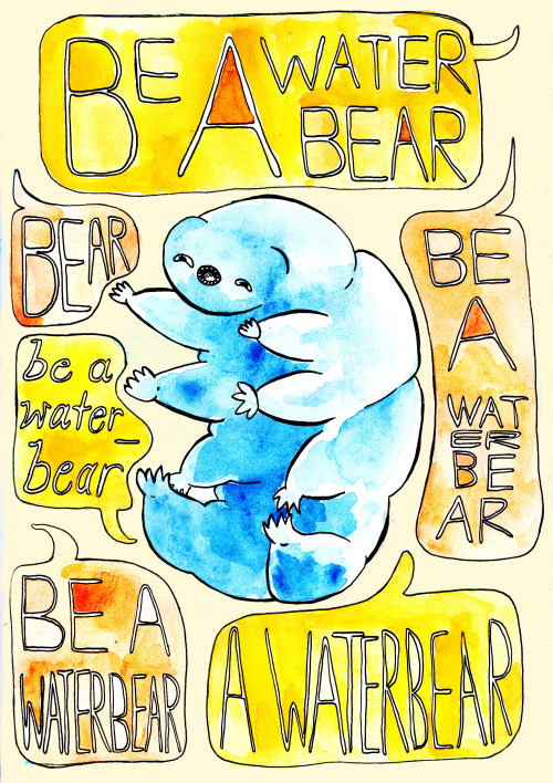 I am going through another phase of waterbear appreciation.