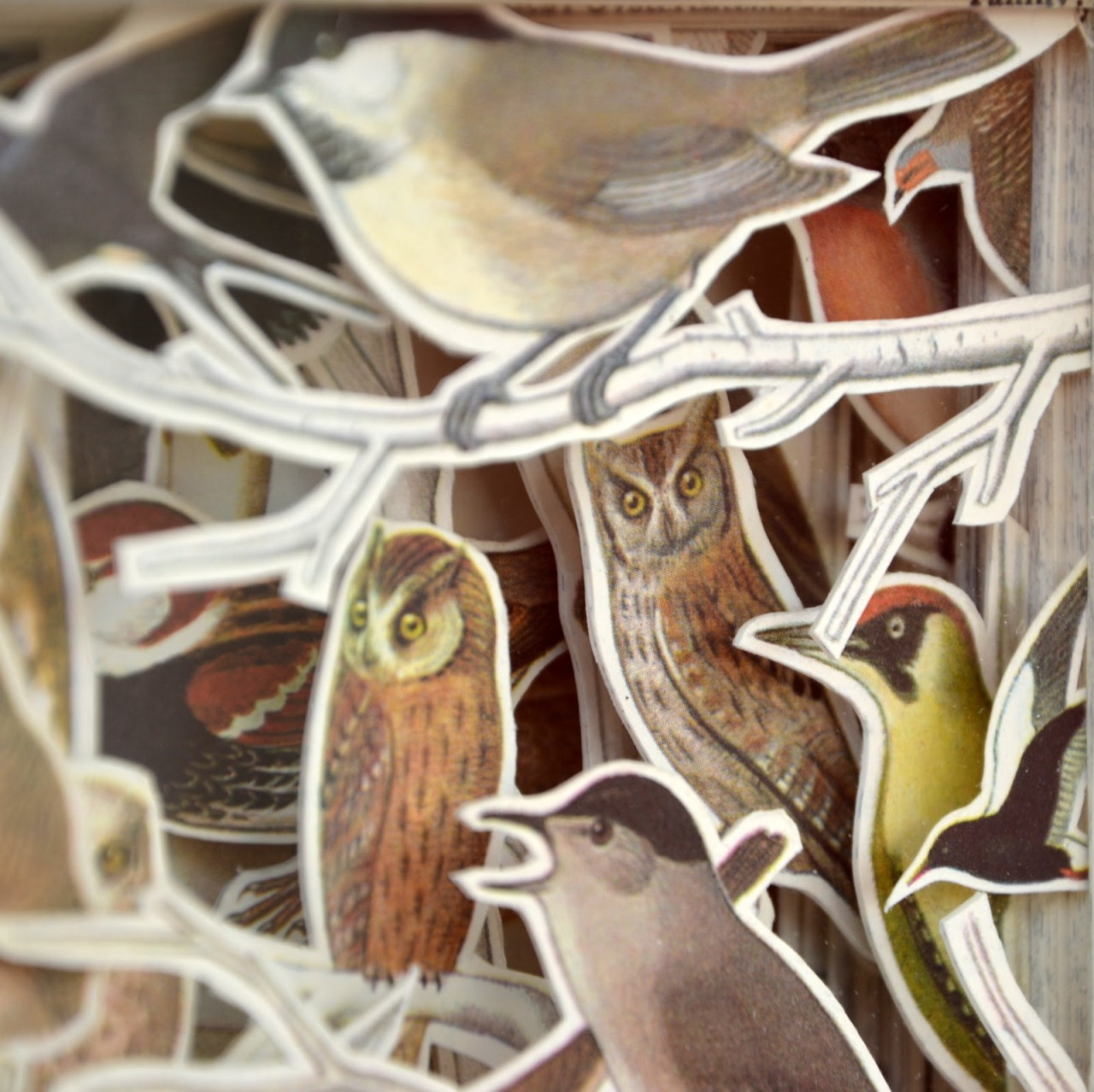 andrew-neil-parr:  'Birds' Book Carving by Julia Strand (Hokey Stokes)
