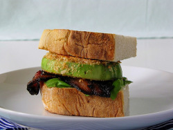 BBFGT (Bacon Basil and Fried Green Tomato) Sandwich by thedabble on Flickr.