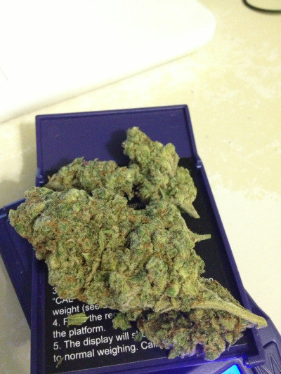 bcastro:  dank as fuck dro i picked up. i've never smelt anything that stinks so good. wish i knew the name
