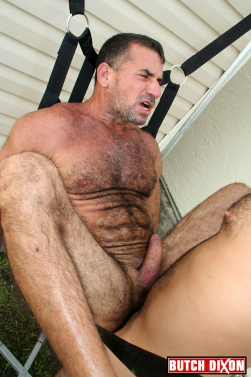 Mature gay hairy muscle men Thepicsaholic com
