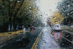 Final Fall, part of Karen Woods' 'Driving Rain' series (via things)