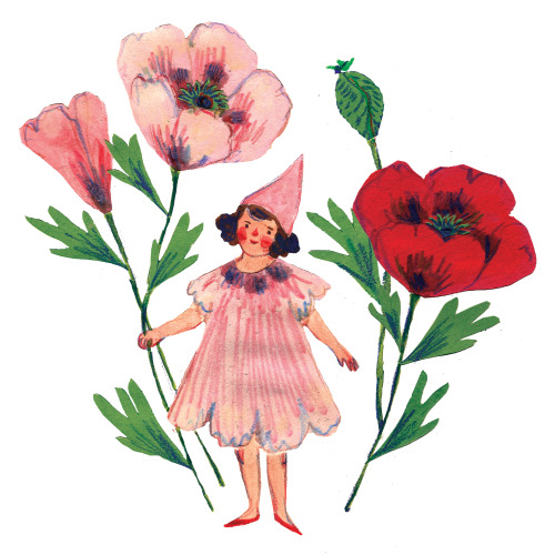 phoebewahl:  Poppy Girl