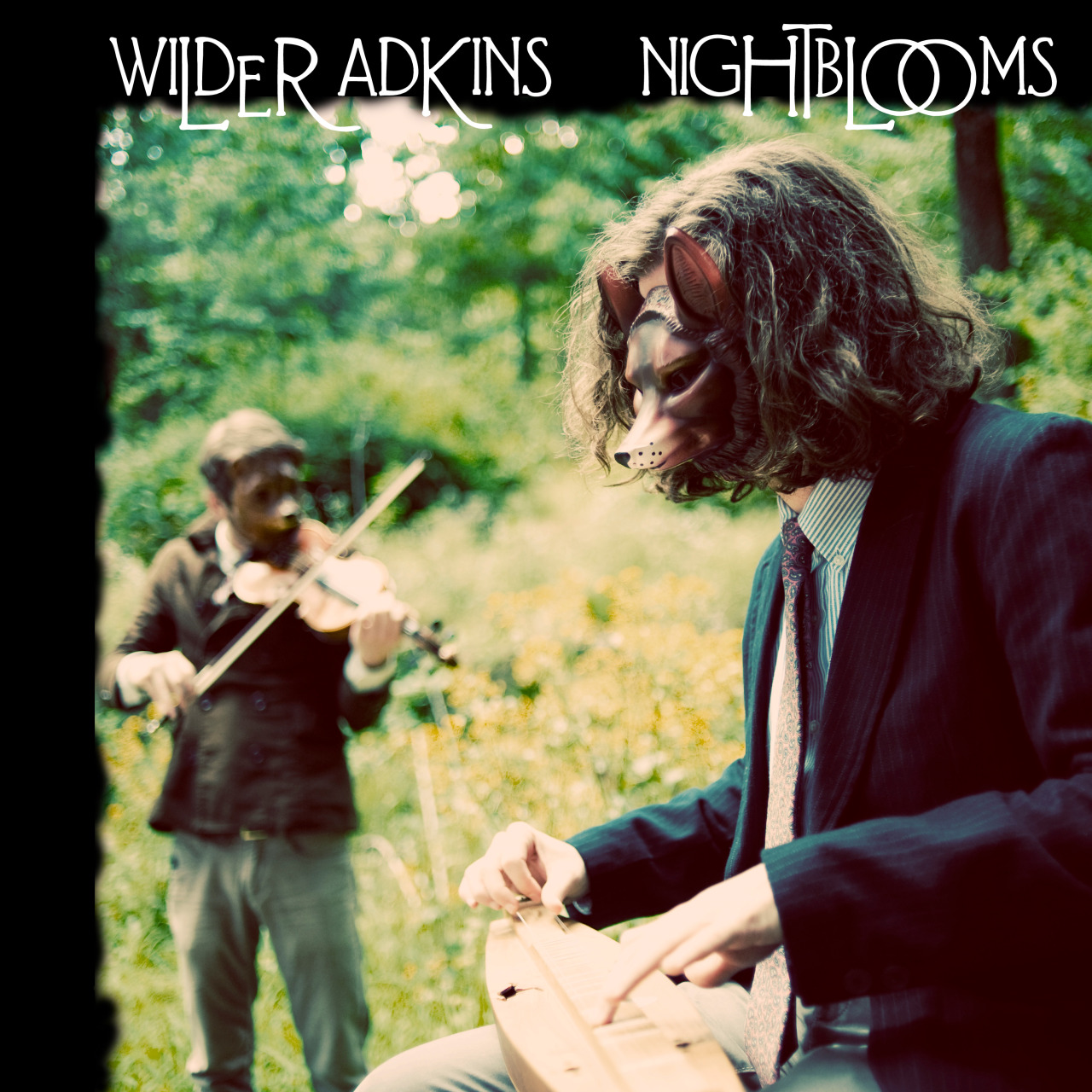 My Lo-Fi Folk gem of a first record, Nightblooms, is now name your own price on Bandcamp for who knows how long. Give it a listen then give it a spin in your car!