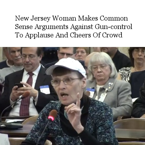 New Jersey Woman Makes Common Sense Arguments Against Gun Control To Applause And Cheers Of Crowd - http://bit.ly/12QavFU