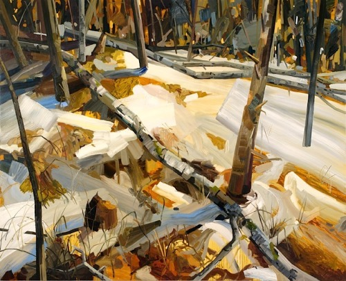 bofransson:  Claire Sherman - Woods and Snow
