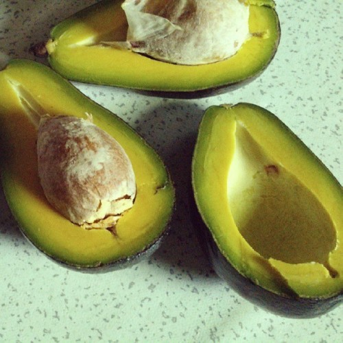 The fairest avocado harvest of them all