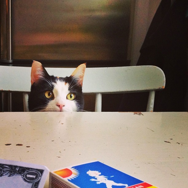 Every meal you make. Every bite you take. I'll be watching you.
