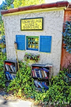 Tuscan Village Used Bookstore. Photo by G.W. Romin