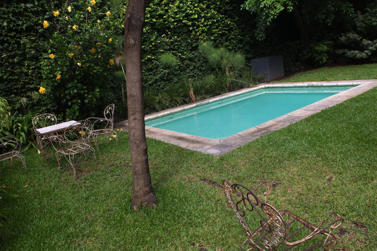 The lovely pool in the secret garden of L'Hôtel Palermo, Buenos Aires   Photo Thomas Filippini