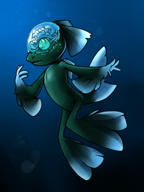 SotW - Juno the Barreleye Fish by *nyausi