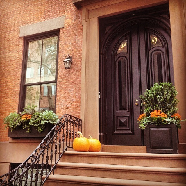 katetodate:  Fall in Brooklyn Heights.