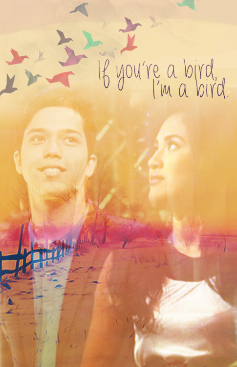"requested by anon JuliElmo crossoverThe Notebook by Nicholas Sparks  ""They didn't agree on much. In fact, they didn't agree on anything. They fought all the time and challenged each other ever day. But despite their differences, they had one important thing in common. They were crazy about each other."""