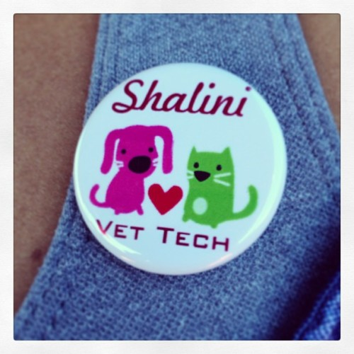 Thanks to @krissysmith for the adorable customized gifts today. #vettech #cosumnesrivercollege #finals #iloveanimals #graduation
