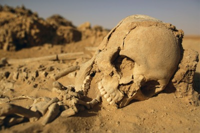 anthrocuriosities:  A 6,000 year old Tenerian skeleton found in the Sahara with its middle finger in its mouth.
