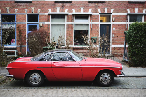 thatyellowvolvoguy:  eriklarkens:  Volvo (old and weird cars series)  wow that looks really cool in two-tone