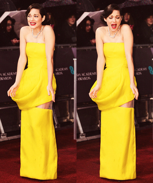 Marion Cotillard | BAFTA Awards (February 10th, 2013)