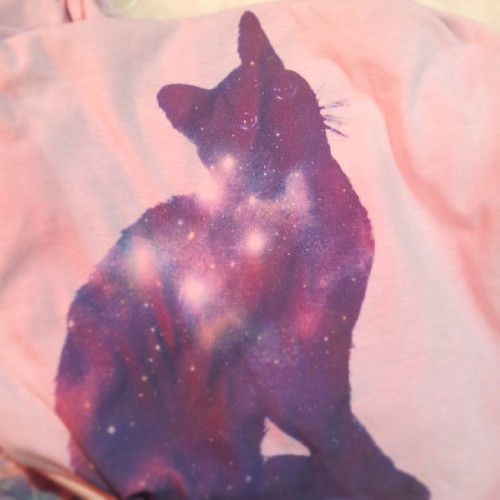 vanillablitzz:  Tehehe galaxy cat