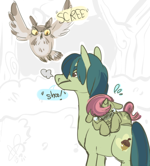 doodleloser:  Pipa doesn't like owls, so Bud always has to scare them off for her to play in the garden. SUCH PRECIOUS BABIES.<3 Bud is mine, Pitter Patter is Jag's.  omg CRYING I NEVER SAW THIS PIPA IS SO CUTE DHJKSD AND THANK YOU BUD owls are freaking SCARY for a wee pony hahaha gfjsdf she's just so terrified they'd gobble her right out or gouge her eyes out with their beak HAHA god (and she' not affraid of tiny things from rats to spiders and crickets)(ur gross pipa but ilu <3)