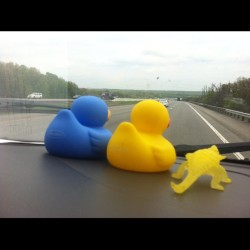 Blue, Fuck the duck, and Steve taking in the view.  (at I80)