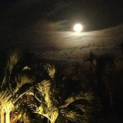 Full moon tonight baby!  Do you feel it?