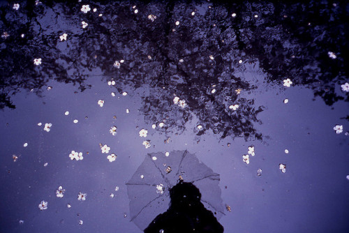 untitled by tetsuya miyoshi on Flickr.