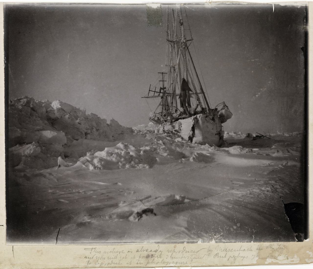 The Fram, locked in Arctic ice, January 1895. Although the Fram is probably more famous for being the ship that Roald Amundsen sailed to Antarctica to begin his epic 99 day/1,860 mile ski to the South Pole, it was in fact originally built by Fridtjof Nansen to try and reach the geographical North Pole by theoretically harnessing the natural east–west current of the Arctic Ocean. The above photo was taken during that maiden voyage. I've posted more about this amazing journey, and yes, there's lots of skiing…: http://vintageski.tumblr.com/post/29161370887/fredrik-hjalmar-johansen-outside-of-elmwood http://vintageski.tumblr.com/post/31343132995/heres-a-photo-of-fridtjof-nansen-and-hjalmar http://vintageski.tumblr.com/post/31734681154/fridtjof-nansen-beside-elmwood-frederick http://vintageski.tumblr.com/post/36438275996/henrik-greve-blessing-on-his-way-to-collect-algae