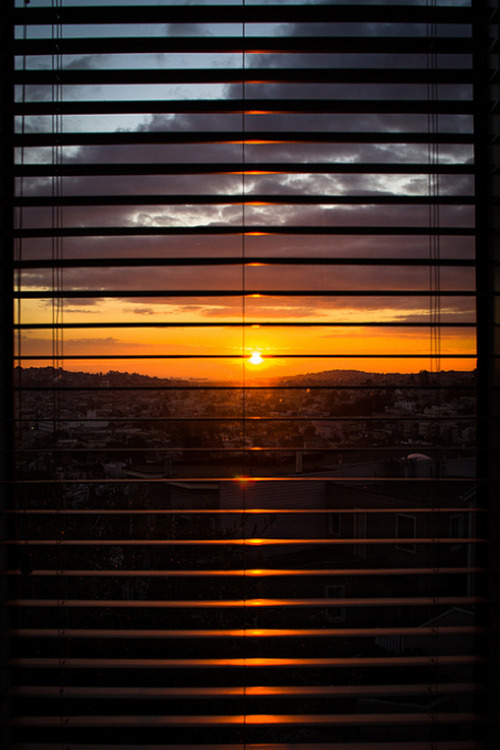 plasmatics-life:  Dawn of the New Year by John