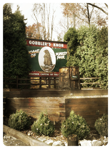 Happy Groundhog Day!! - Gobbler's Knob, Punxsutawney PA