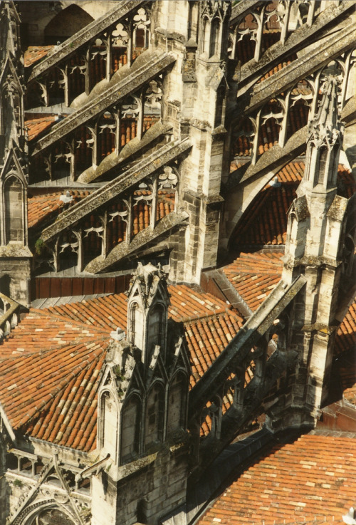 italdred:  cathédrale saint-andré (by shining example)