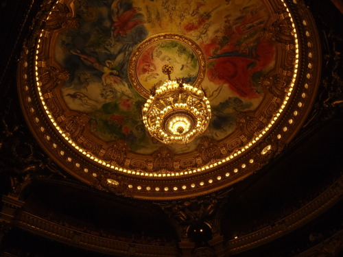 orangepekohe:  Roof of the Paris Opera House.  Le toit de l'Opera de Paris.  .
