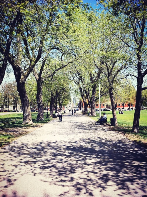 Spring Path at Parc Jeanne-Mance – View on Path.