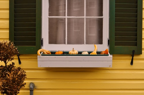 Window and squash
