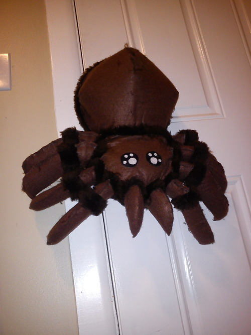 Who's my cute little killer? Yes you are. Yes you are. Spider puppet: 100% complete. All legs and fangs are operational AND it shoots silly string. BAM! Annoyance Theater - Sunday December 9th @ 4PM!