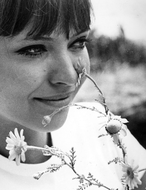 lavandula:  anna karina on the set of pierrot le fou directed by jean-luc godard, 1965