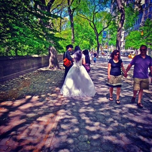 Museum Mile Bride: Central Park NYC #5thavenue #cpk #centralparkeast #centralpark #bride #wedding #bridalgown #nyc #newyorkcity #strangerpix #instanyc #spring
