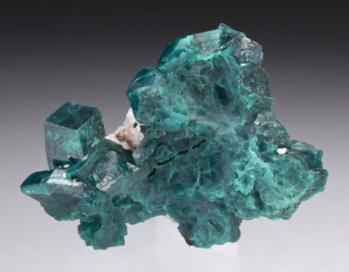 Dioptase from Kazakhstan by Dan Weinrich