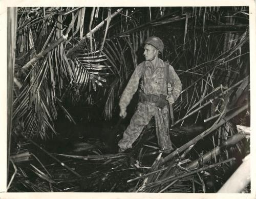 WWII U.S. Soldier on Patrol in Sago Swamp in New Guinea. Spooky Pastime. New Guinea - Ankle deep in the mud of Sago swamp, Pvt Edward Kirby of Louisville, Ky. Hacks away jungle as he hunts any cache Japanese in New Guinea. The sharp machete is not only a useful weapon, it chops a path to their possible hiding place. Everyday, a Platoon of Yank fighters patrols the conquered area of New Guinea on a constant lookout for straying enemy. Credit Line WP ACME, 6/17/43.