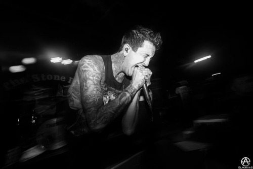 Photo by Adam Elmakias