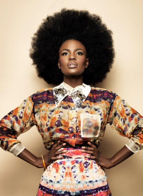 Shanghai Shoniwa for Mizani via Woman In The Jungle  DREAM AFRO SIZE !!
