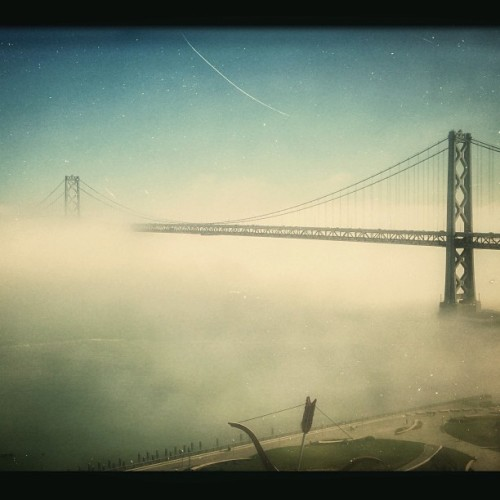 Foggy day in #SanFrancisco. #baybridge #yepthebaybridgeAGAIN #bayarea #cityscape #silenthill #fog #notcats #photooftheday