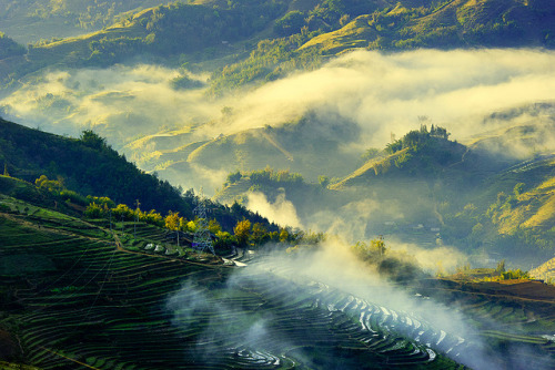 isawatree:  Sapa_2011_48 by Haikeu on Flickr.
