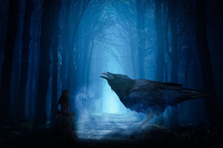 I am not scared of anything. I have already tasted life's worst shit. All I want to know is when the fuck is it all going to end :? #crow#raven#bird#blur#forest#sad#end#scared#trees#light#smoke#fog#blue#bulgarian#bulgaria