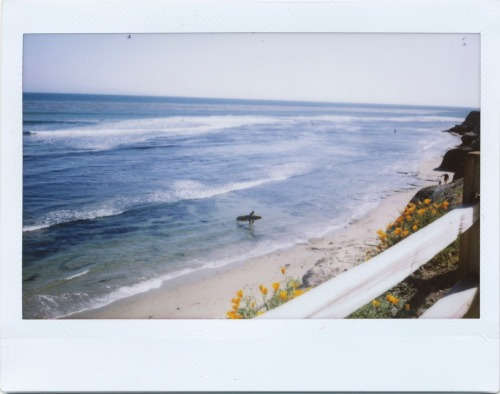 shakasandsinglefins:   FOLLOW THIS AMAZING SURF BLOG! SHE FOLLOWS BACKK!!!!!