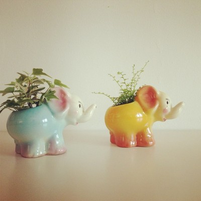 A parade of elephants of the vintage planter variety, found and planted, at #homewithheart #charlotte #115cherokee  (at home with heart -lakbdesign shop & studio)