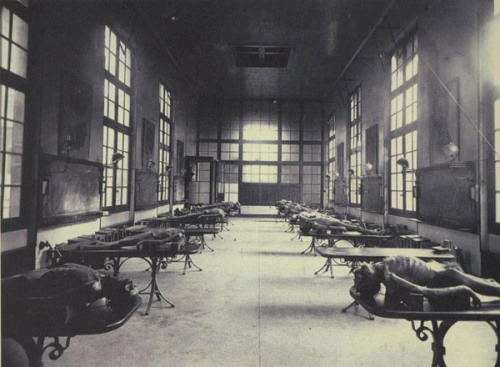 Dissection room of a Bordeaux, France medical school c. 1890